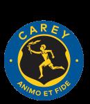 Carey Grammar School (CY)