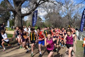 APS Boys' Cross Country Results 2019