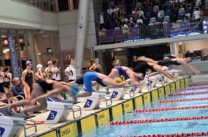 Swimming & Diving Results